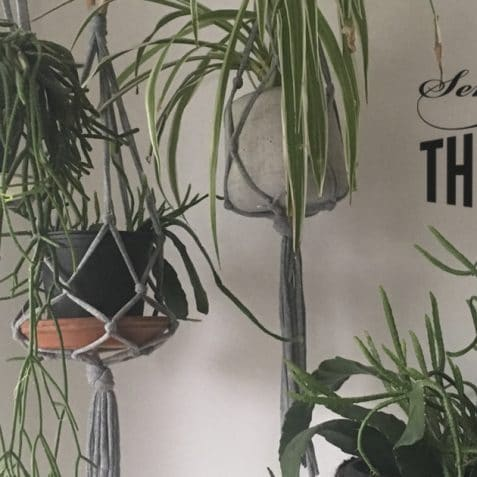 Sew Thrifty, Poplar Union, sewing workshops, sewing workshops near me, affordable sewing class, East London, upcycle, how to make Macrame Plant Hanger, tower hamlets, Poplar