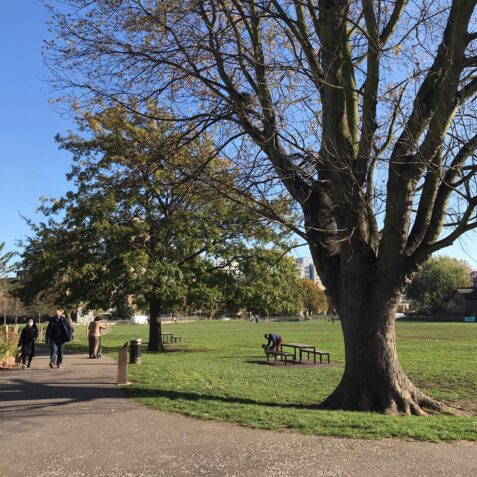 Bartlett park, poplar union, sunny jar eco hub, nature trail, spring workshop, family activity, east london, poplar, tower hamlets parks, things to do in April